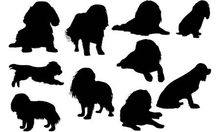 Ilustración de Cavalier King Charles Spaniel Dog silhouette illustration - Imagen libre de derechos
