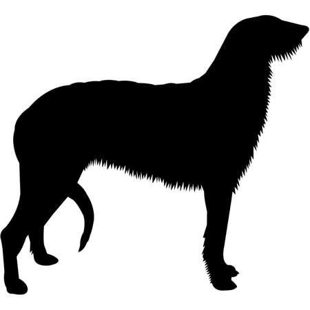 Illustration pour Scottish Deerhound  Silhouette Vector - image libre de droit