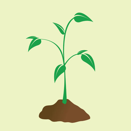 Illustration pour Young plant sprouting forth from the dirt. - image libre de droit