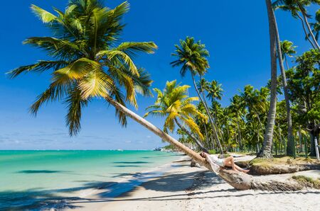 Photo pour Young tourist young woman lying in coconut tree in paradise beach of Brazil, Carneiros Beach, Pernanbuco, Brazil. - image libre de droit