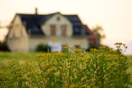 Photo pour Blurred house with focused flowers. Concept: Rent, sell or buy home - image libre de droit