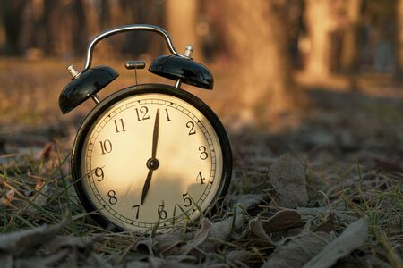 Photo pour ALARM CLOCK IN THE MORNING IN THE FOREST WITH SUN - image libre de droit