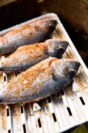 the grilled fish on the camping table