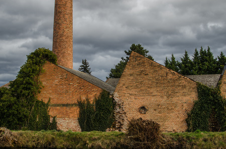 old overgrown factory of brick