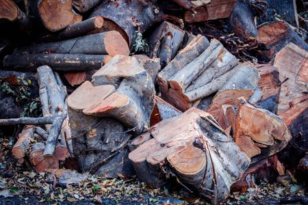 Firewood log for make charcoal,Causes greenhouse effect While the world coming to think earth.