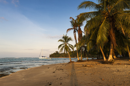 View of a beach with palm trees and boats in Puerto Viejo de Talamanca, Costa Rica, Central America