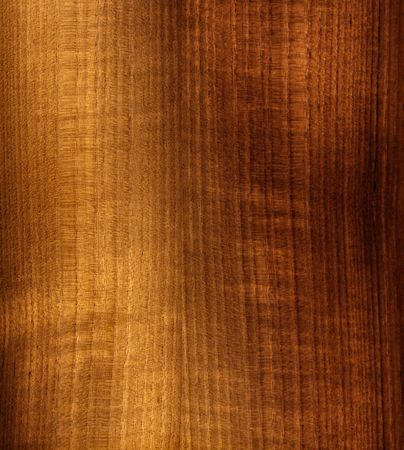 fine image of classic natural wood panel
