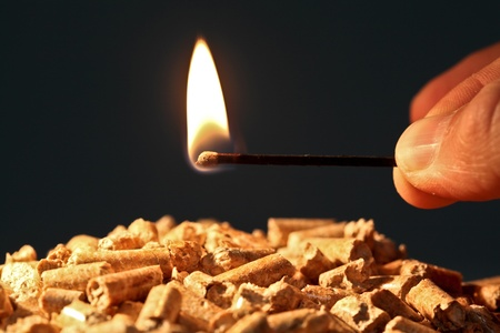 closeup on wood pellet with start fire flame