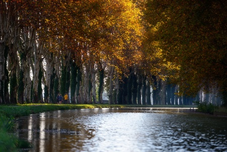 morning stroll on the Canal du Midi in France