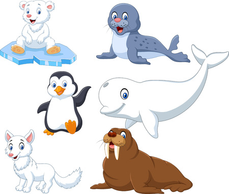 Vector illustration of Arctics animals collection set on white background