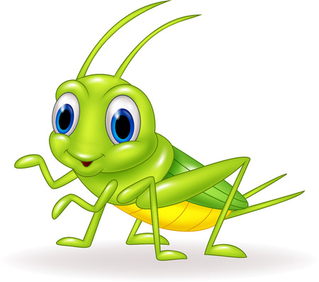 Vector illustration of Cartoon cute green cricket isolated on white background