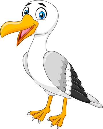Vector illustration of Cartoon seagull posing isolated on white background