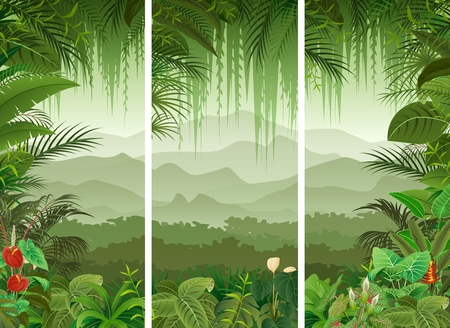 Illustration pour illustration of Set of three tropical forest background - image libre de droit