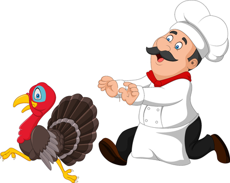 Illustration for Vector illustration of Cartoon chef trying to catch a turkey - Royalty Free Image