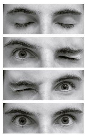 Photo pour Detail of eyes - image libre de droit