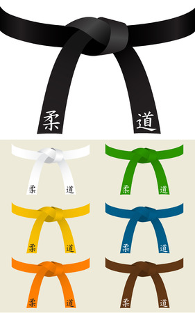 Collection of Judo or other martial art belts