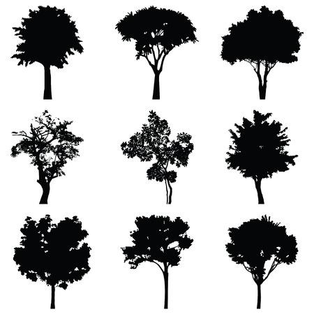 Ilustración de Set of nine trees vector silhouette - Imagen libre de derechos
