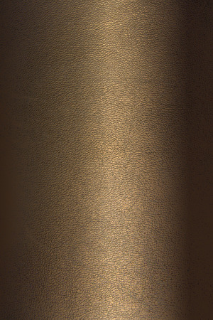 background leather texture bronze color vertical position