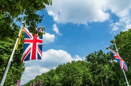 Union Jacks or Union Flags  (British flags) amongst the trees under a summer sky