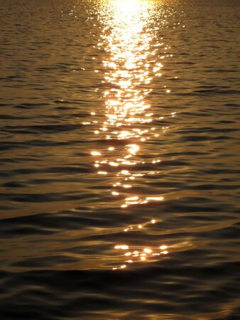 Sun shimmering on golden waves