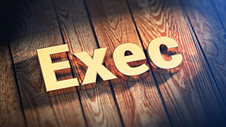 The word Exec is lined with gold letters on wooden planks. 3D illustration image