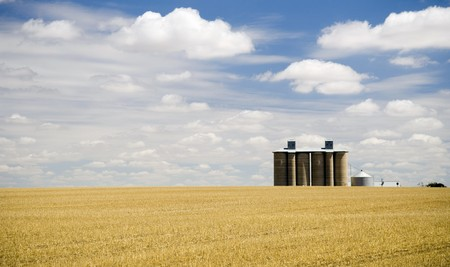 Harvested field with grain silo and fluffy white clouds