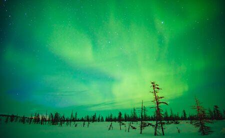 Photo pour Fabulous sky in the Russian Arctic in winter - image libre de droit