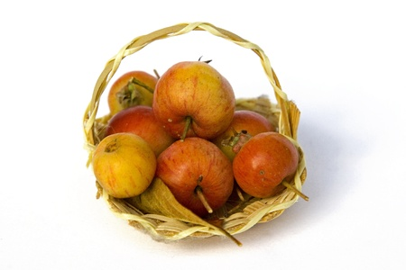 Small basket filled with crab apples