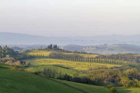 Early morning in typical Tuscany landscape