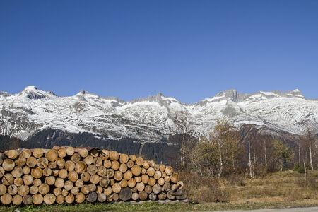 Firewood pile in Medel valley in Switzerland