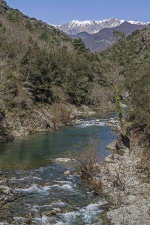River Argentina in Ligurian Apennines