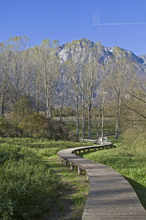 You can reach  dry foot by means of wooden bridges through the idyllic biotope on the Terlago lake