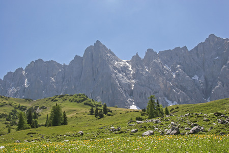 Summer meadow in front of the mighty Laliderer wall in Karwendel