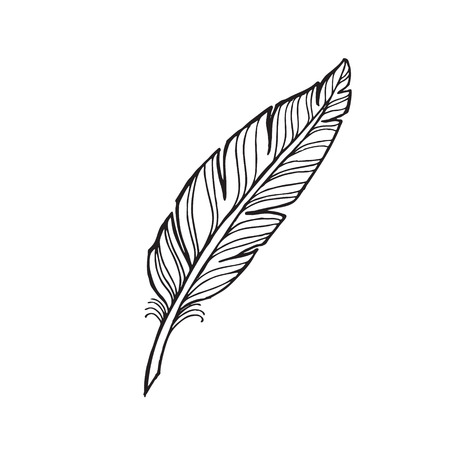 Illustration for black and white feather on a white background. tattoo feather. - Royalty Free Image