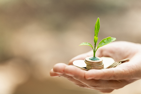 Photo for Hand with tree growing from pile of coins, concept for business, innovation, growth and money - Royalty Free Image