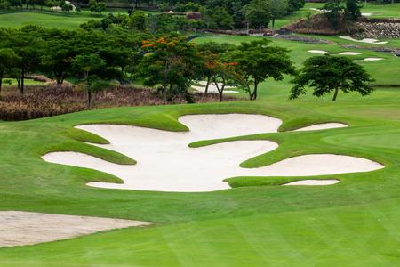 Golf Courses and tree at Hua Hin thailand