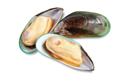 Foto de Three raw New Zealand mussels on shell isolated on white background - Imagen libre de derechos