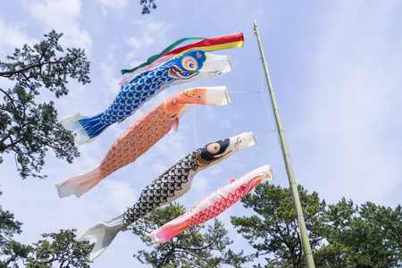 The carp streamer which swims elegantly