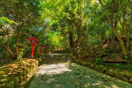 Photo pour Usa Jingu (Oita Prefecture) in the beautiful spring of Wakaba - image libre de droit