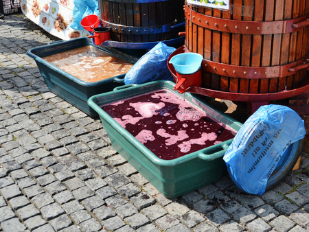 Freshly pressed must, grape juice or young wine is dripping in plastic tubs from traditional basket press.