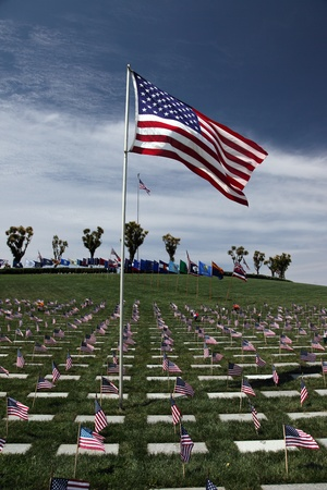 American Flags at an American National Military Cemetery