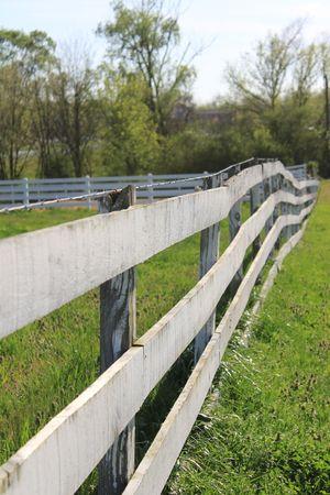 Fence Vantage Point