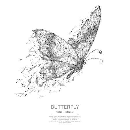 Ilustración de Butterfly low poly wireframe isolated black on white background. Abstract mash line and point origami. Vector polygon illustration. Insect with geometry triangle. Light connection digital structure. - Imagen libre de derechos
