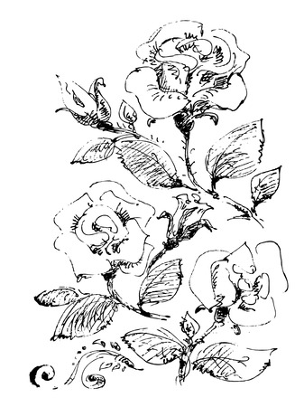 Stylized pattern with flowers and leaves on a white background.