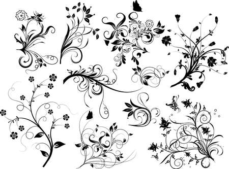 Set of floral elements for design, vector illustration