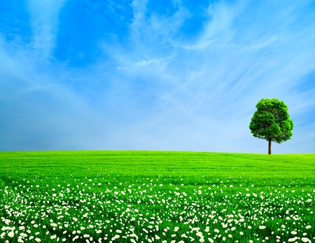 Photo for Abstract rural landscape  Green meadow under the blue skies - Royalty Free Image
