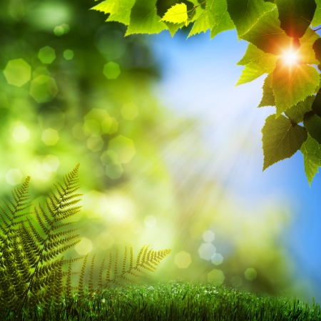 Summer natural backgrounds with beauty bokeh
