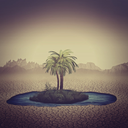 Photo pour Oasis in the desert, abstract natural backgrounds for your design - image libre de droit