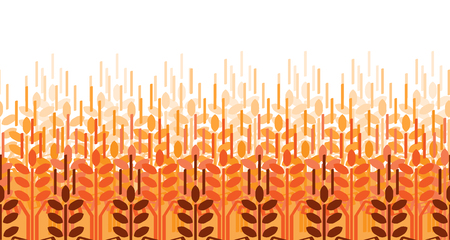 Wheat ears pattern. Vector agriculture background. Wheat field