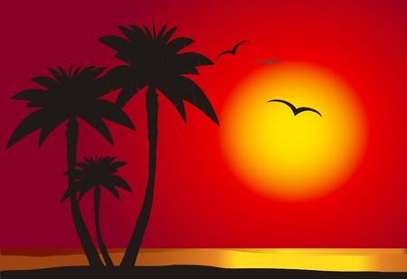Illustration pour Sunset on the beach with palm silhouette,  vector  - image libre de droit